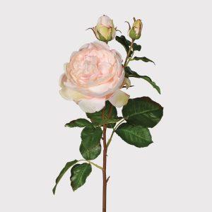 Pale pink rose spray