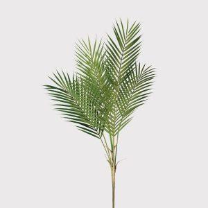 Palm bush stem