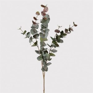 Natural blush eucalyptus spray